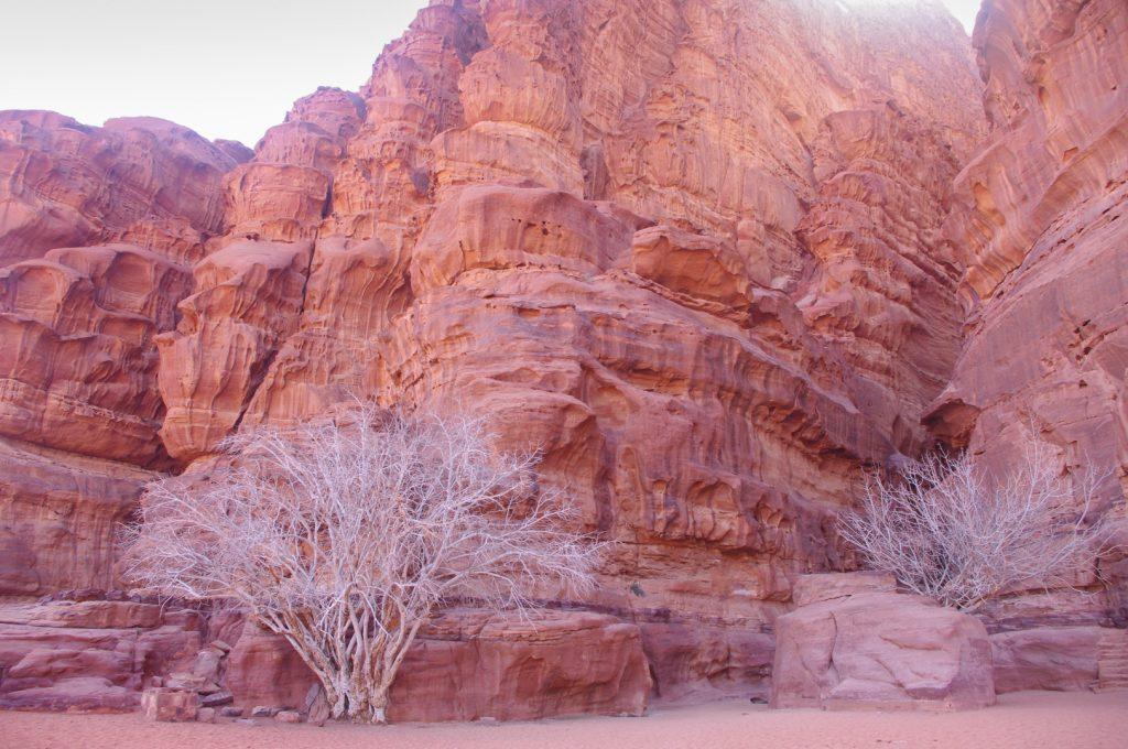 Wadi Rum dykuma